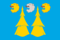 Flag of Manturovo rayon (Kostroma oblast).png