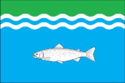 Flag of Onezhsky District
