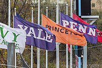 Flags of the Ivy League.jpg
