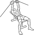 Flat-bench-cable-flys-1.png