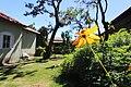 Flor no Quintal.jpg