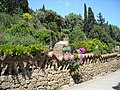 Flora Parc Guell - panoramio.jpg