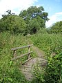 Footbridge and Footpath to Frodsham - geograph.org.uk - 1388184.jpg