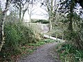 Footbridge and path - Nine Wells - geograph.org.uk - 751969.jpg