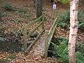 Footbridge over unnamed watercourse in Durham University Botanic Garden - geograph.org.uk - 2171245.jpg
