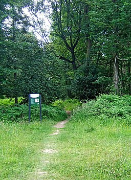 Footpath and sign in Wyre Forest - geograph.org.uk - 1372062