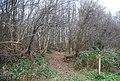 Footpath enters Gigmore Wood - geograph.org.uk - 1107488.jpg