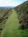 Footpath near Bryn-yr-odyn - geograph.org.uk - 541888.jpg