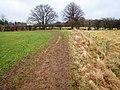 Footpath near East Angrove - geograph.org.uk - 1700956.jpg