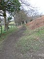 Footpath to Castell Dinas Brân - geograph.org.uk - 703036.jpg