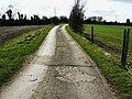 Footpath to Goatacre - geograph.org.uk - 1187130.jpg