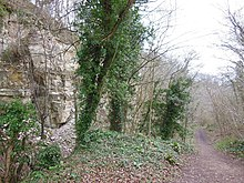 Former quarries in Coaley Wood (geograph 3446390).jpg