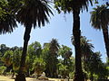 Fountain - Villa Giulia, Palermo, Sicily, Italy (9458439166).jpg