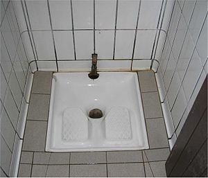 Squat toilet - Squat toilet at a motorway service station near Toulouse, France. In areas of Europe where squat toilets are used, they are usually public toilets