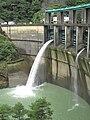 Futatsuno Dam river maintenance discharge.jpg