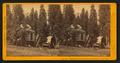 Galen's Hospice, Mariposa Grove, Mariposa County, Cal, by John P. Soule.png