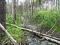 Garkalnes novads, Latvia - panoramio (23).jpg