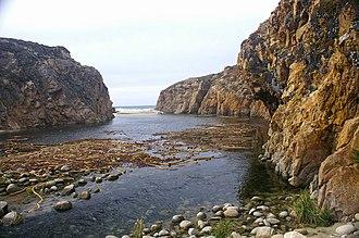 Garrapata State Park - Image: Garrapata Creek California 2006 02
