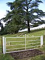 Gate and cattle grid, Teffont Evias - geograph.org.uk - 1135055.jpg