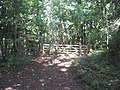 Gate on the Cotswold Way - geograph.org.uk - 986283.jpg