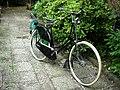 Gazelle Omafahrrad series -3.jpg