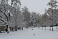 Geneve Sous la neige - 2013 - panoramio (33).jpg