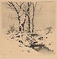 George Elbert Burr, Snow, c. 1910, NGA 69341.jpg