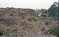 Geotechnical Investigation - Science City Site - Dhapa - Calcutta 1993-02-27 283.JPG