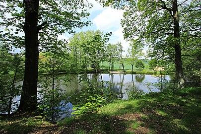 Geschützter Landschaftsbestandteil Schubertgrund in Sachsen.2H1A1400WI.jpg
