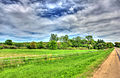 Gfp-southern-wisconsin-landscape-at-the-roadside.jpg