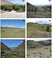 Gnorimoschema habitats (10.3897-zookeys.857.34188) Figures 43–48.jpg