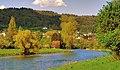 Goldig Zurich Limmat Unterengstingen - panoramio.jpg