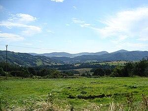 Dzierżoniów County