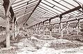 Gradnja toplovodne vrtnarije v Velenju 1961 (2).jpg