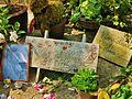 Grave of Serge Gainsbourg, Cimetière du Montparnasse, Paris 002.jpg