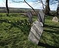 Gravestones, Church of St Winwallo, Tremaine - geograph.org.uk - 722386.jpg