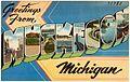 Greetings from Muskegon Michigan (73783).jpg