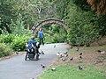 Grosvenor Park - geograph.org.uk - 1079012.jpg
