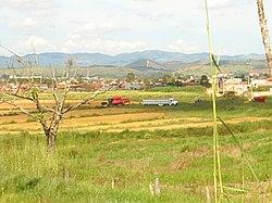 Plantação de arroz no Cinturão Verde da cidade, após a Zona Norte.