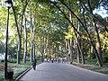Gulhane park Istanbul 2007 002.jpg