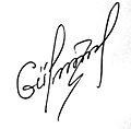 Gulmammadov signature.jpg