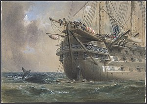 H.M.S. Agamemnon Laying the Atlantic Telegraph Cable in 1858- a Whale Crosses the Line MET DP801262.jpg