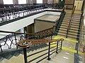 HK Sai Ying Pun 西區裁判法院 Western Magistracy interior stairs 09.jpg