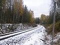 Haapamäki–Jyväskylä-track in Jyväskylä.jpg