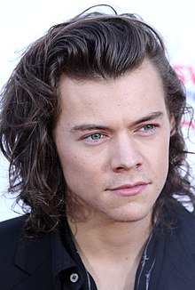 harry styles hair color harry styles 4305 | 220px Harry Styles November 2014