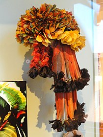 Headdress, Munduruku people, macaw and toucan feathers - South American collection - Peabody Museum, Harvard University - DSC05693.JPG