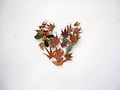 Heart of leaves in snow.JPG