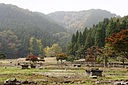 Heimen fukugen-chiku of Ichijodani Asakura Family Historic Ruins01s3s4592.jpg