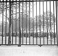 Hek rondom het Hyde Park op de achtergrond Hyde Park Corner met een spreker op , Bestanddeelnr 254-1978.jpg