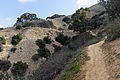 Hellman Park Whittier CA 3 Mariposa Trail.jpg
